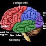 Brain Tricks
